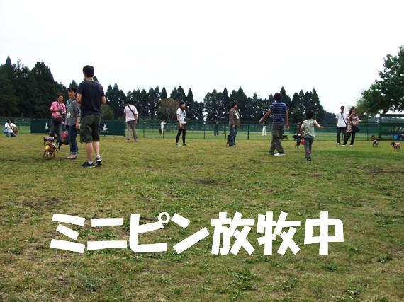 20090926_0381_3